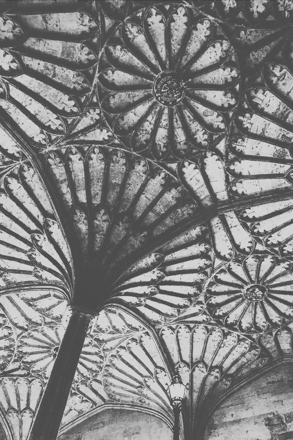 Oxford ceilings